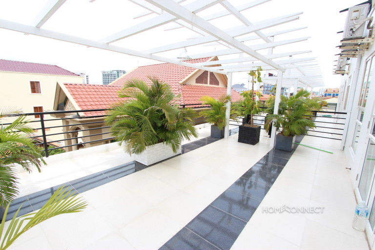 Large Terrace 1 Bedroom Apartment Near Russian Market | Phnom Penh Real Estate